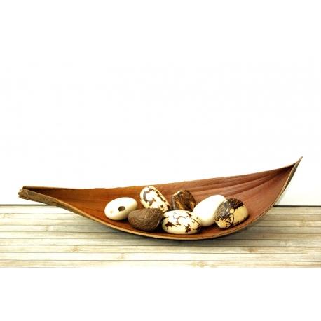 Noix brutes et décoratives en tagua, ivoire végétal - Noix d'ivoire végétal dans un Cocoboat - kokobelli
